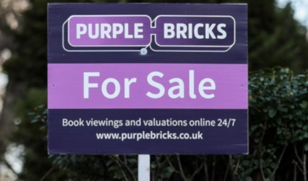 LESSONS FROM THE PURPLE BRICKS CRASH