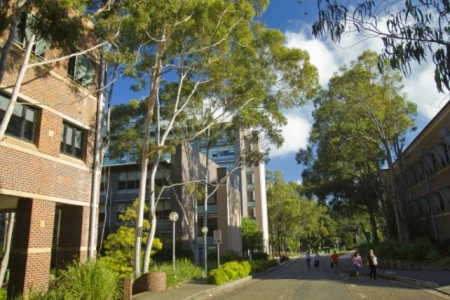 Macquarie University is a huge component of the Macquarie's population