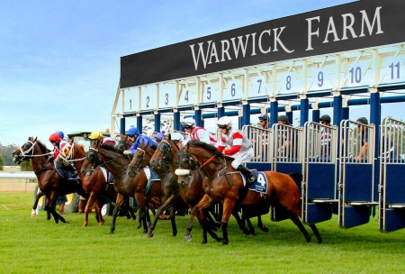 Warwick Farm will never be the same after the $140M redevelopment.